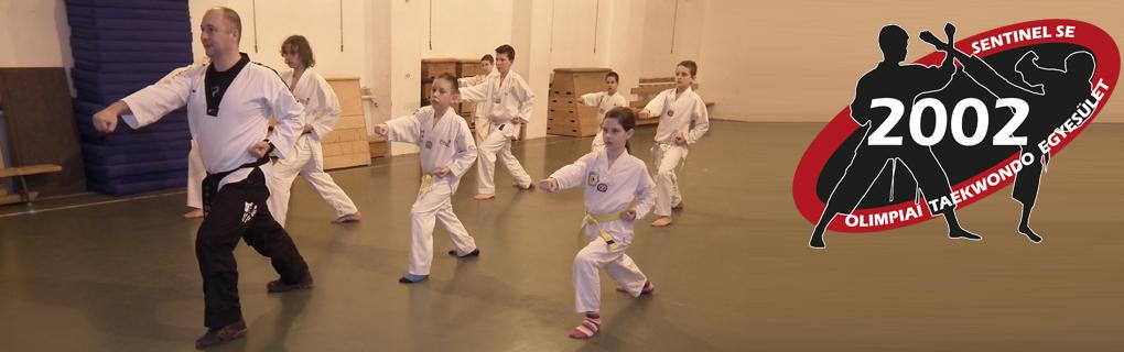A taekwondo formagyakorlatok tökéletes elsajátítása érdekében külön formagyakorlat edzéseket tartunk.