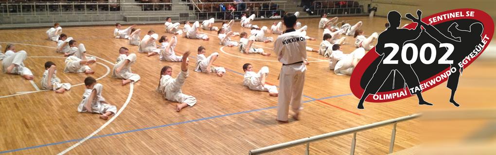 Rendszeresen részt veszünk a koreai nagymesterek által vezetett szemináriumokon és közös edzéseken.